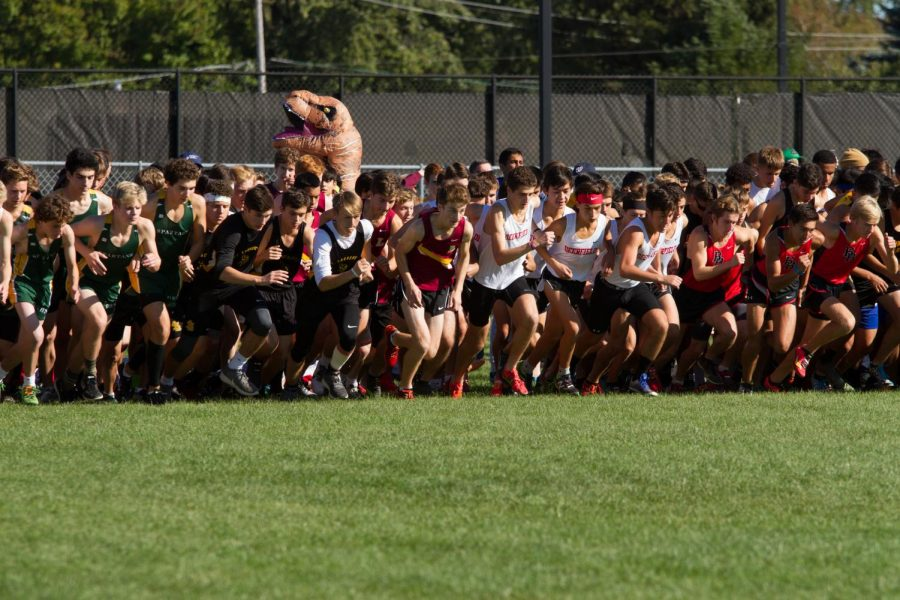 Loyola Track Looks Promising for Upcoming Season