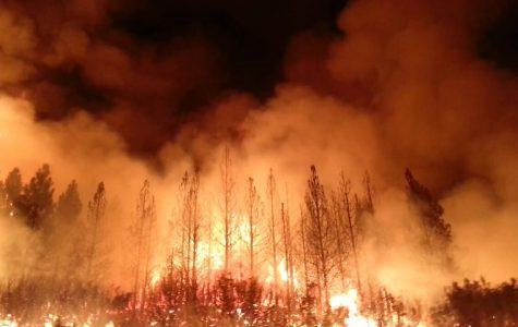 Wild Fires Ravage Northern California