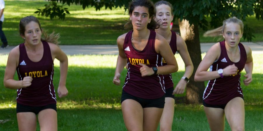 Cross country demands everything from its runners, which they are happy to give.